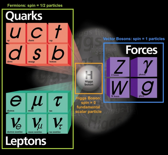 joe stack tau physics standard model leptons