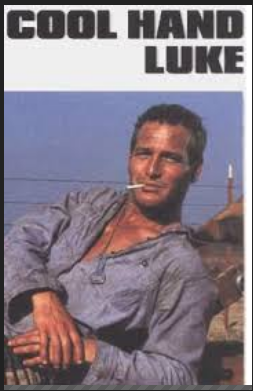 cool hand luke paul newman
